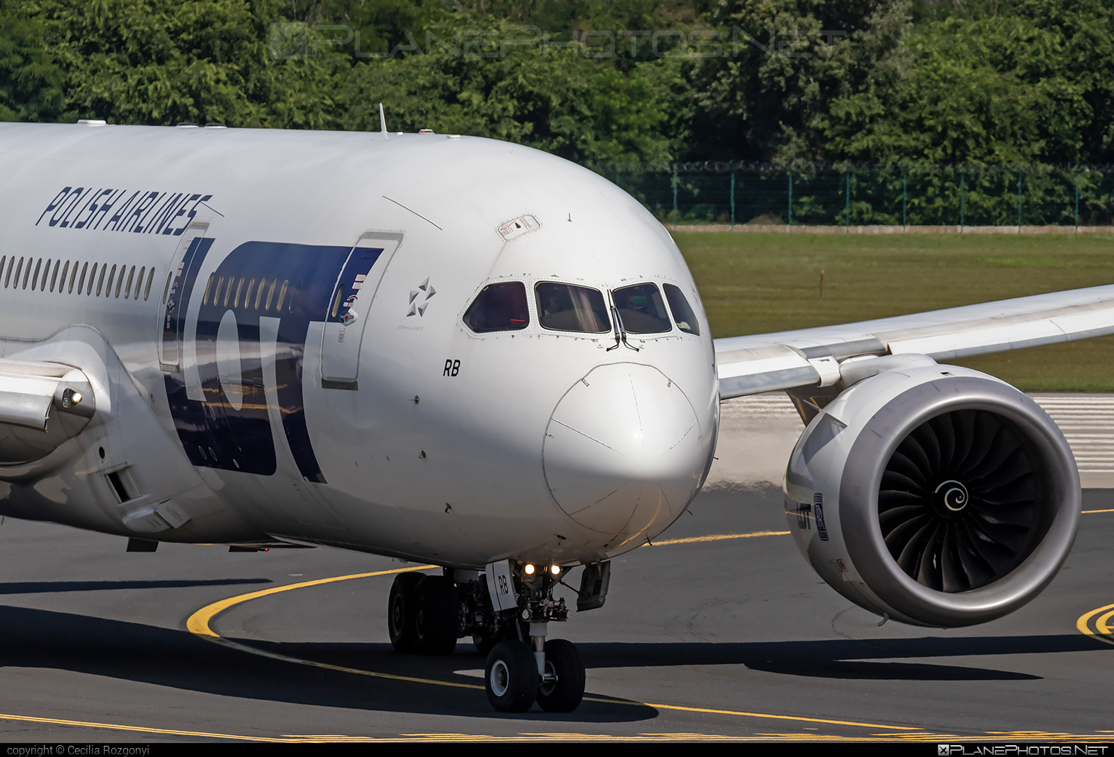 Boeing 787-8 Dreamliner - SP-LRB operated by LOT Polish Airlines #b787 #boeing #boeing787 #dreamliner #lot #lotpolishairlines