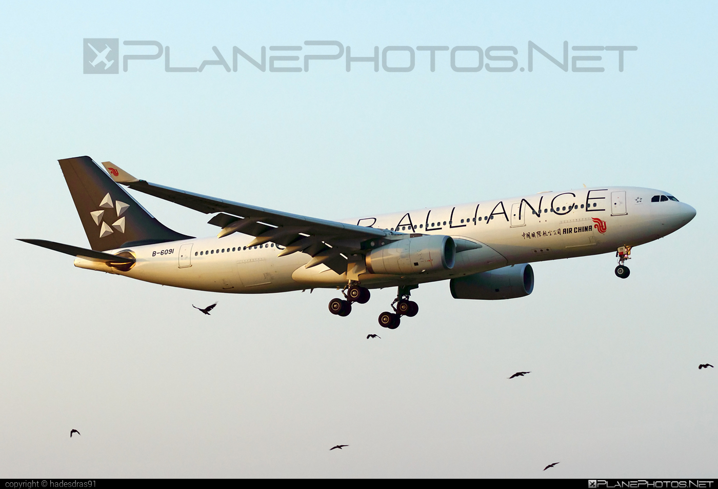 Airbus A330-243 - B-6091 operated by Air China #a330 #a330family #airbus #airbus330 #airchina #staralliance