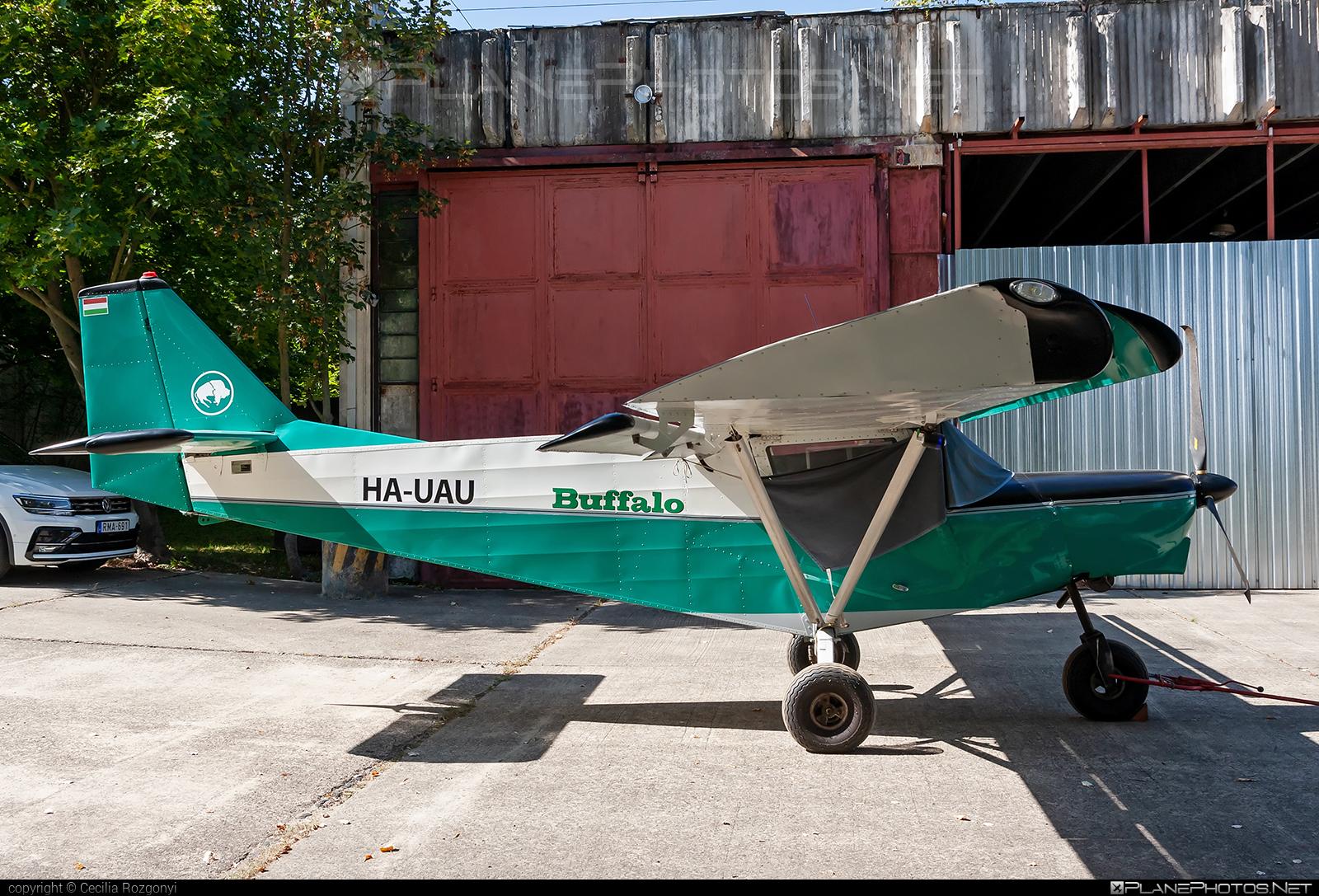I.C.P. Savannah - HA-UAU operated by Private operator #icp #icpsavannah