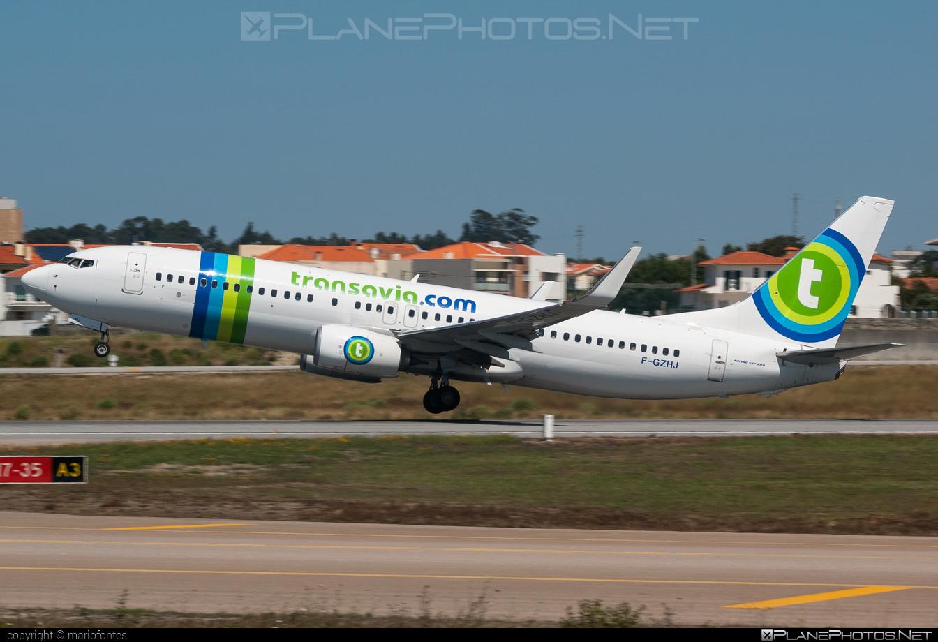 Boeing 737-800 - F-GZHJ operated by Transavia France #b737 #b737nextgen #b737ng #boeing #boeing737