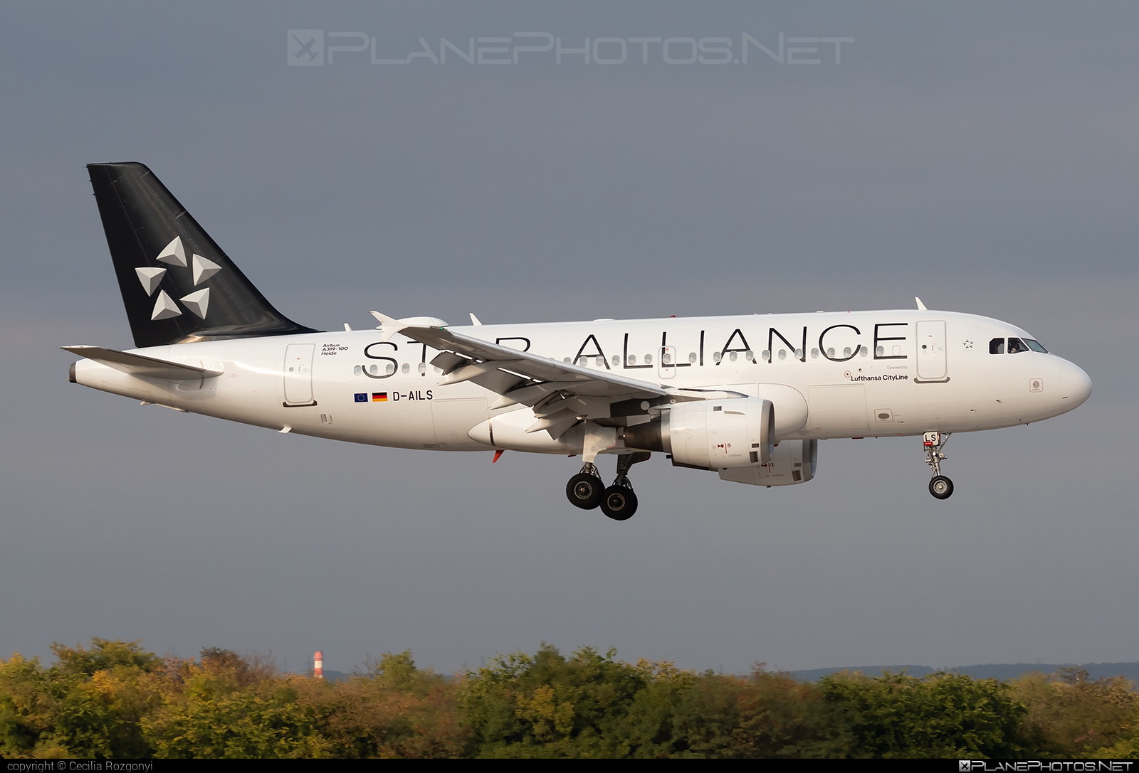 Airbus A319-114 - D-AILS operated by Lufthansa #Budapest #D-AILS #FerencLisztIntl #Heide #SpecialLiveries #StarAlliance #a319 #a320family #airbus #airbus319 #lufthansa