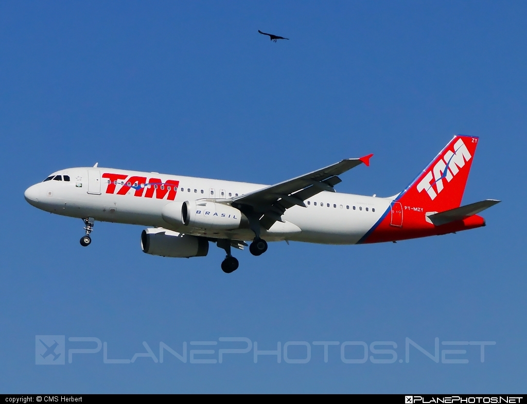Airbus A320-232 - PT-MZY operated by TAM Linhas Aéreas #a320 #a320family #airbus #airbus320 #tam #tamairlines #tamlinhasaereas