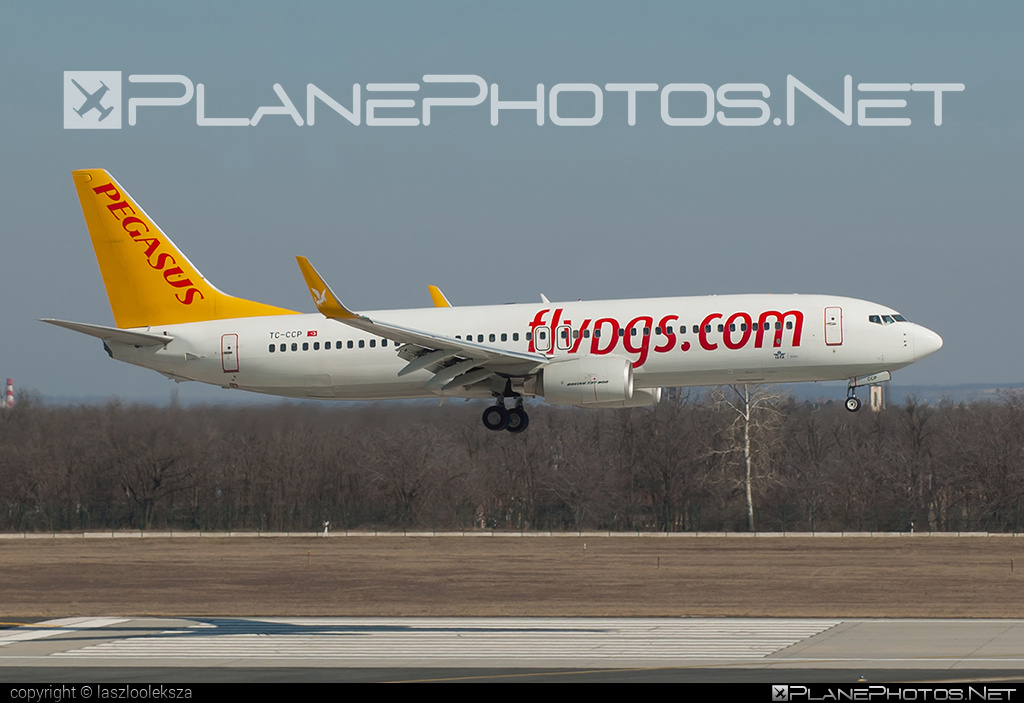 Boeing 737-800 - TC-CCP operated by Pegasus Airlines #b737 #b737nextgen #b737ng #boeing #boeing737