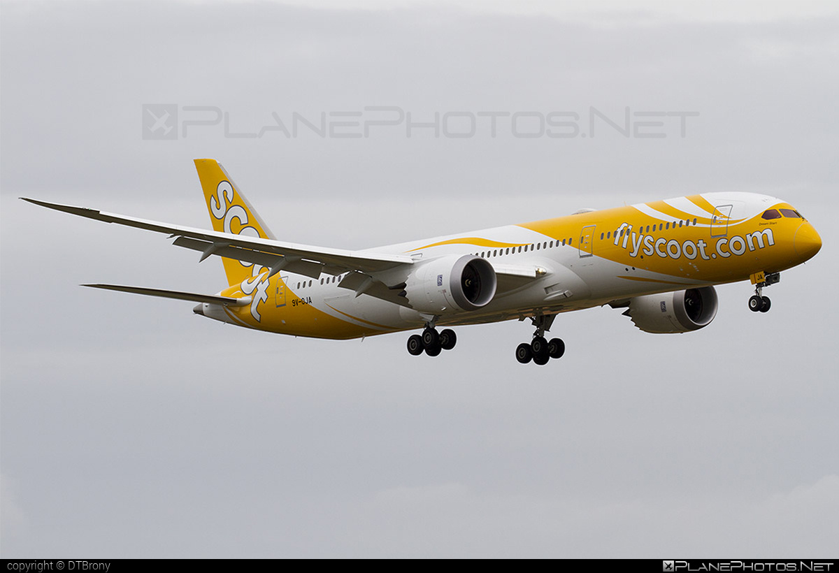 Boeing 787-9 Dreamliner - 9V-OJA operated by Scoot #b787 #boeing #boeing787 #dreamliner