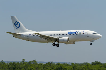 Boeing 737-300 - 9H-AJW operated by Bluebird Airways