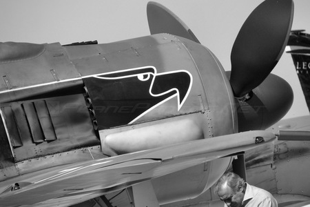 Flug Werk FW 190A-8/N - F-AZZJ operated by Private operator
