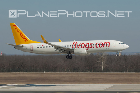Boeing 737-800 - TC-CCP operated by Pegasus Airlines