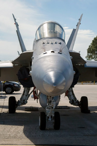 McDonnell Douglas F/A-18C Hornet - 165177 operated by US Navy (USN)