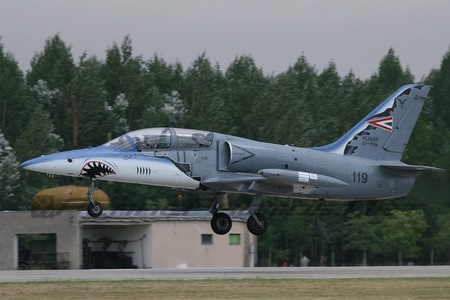 Aero L-39ZO Albatros - 119 operated by Magyar Légierő (Hungarian Air Force)