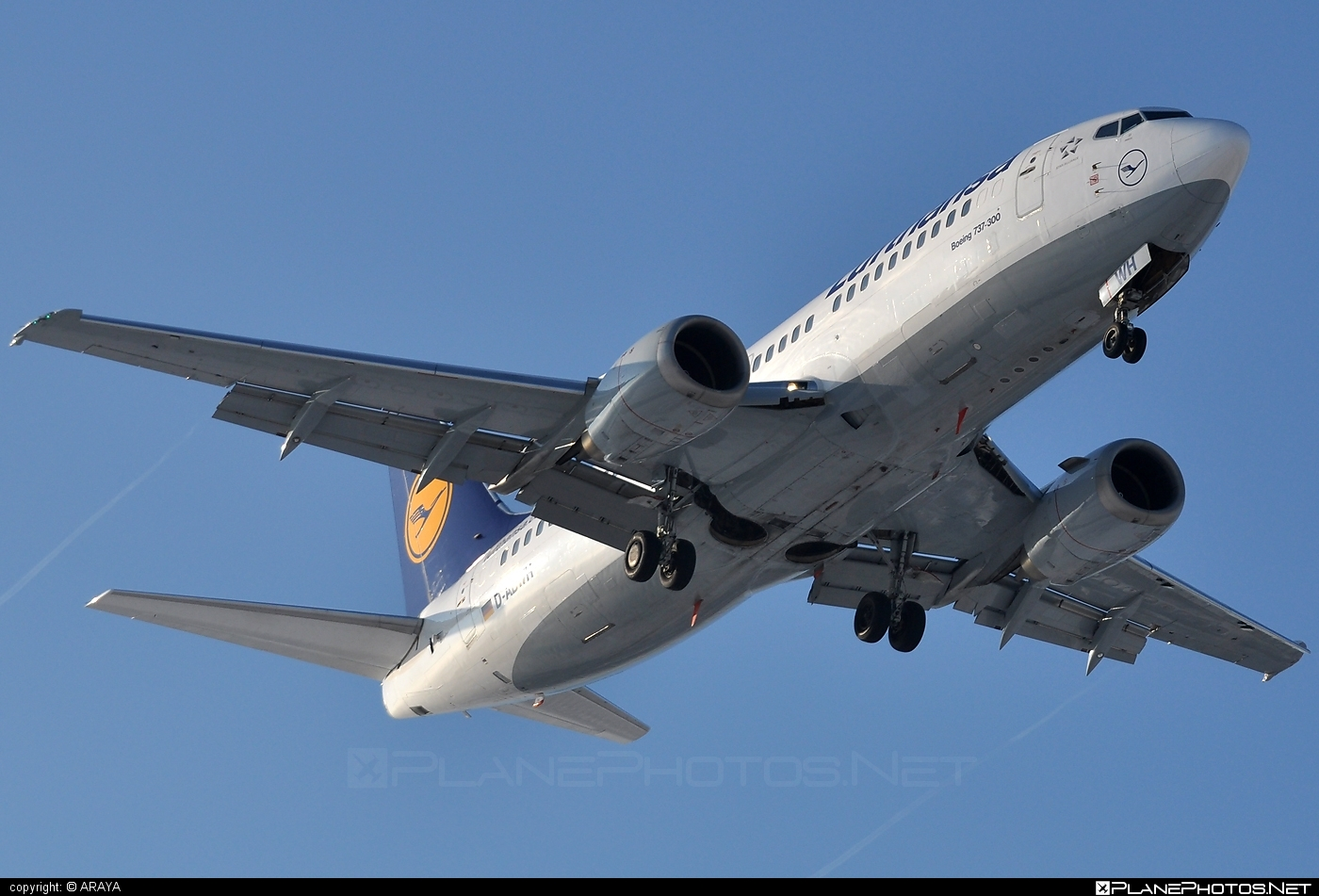 Boeing 737-300 - D-ABWH operated by Lufthansa #b737 #boeing #boeing737 #lufthansa