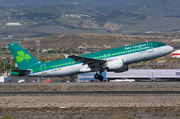 Airbus A320-214 - EI-DEJ operated by Aer Lingus