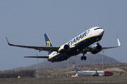 Ryanair Boeing 737-800 - EI-EGB