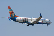 Boeing 737-800 - TC-SNY operated by SunExpress
