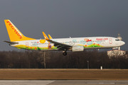 Boeing 737-800 - TC-CPN operated by Pegasus Airlines