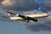 Airbus A340-642 - D-AIHZ operated by Lufthansa