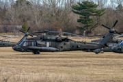 Sikorsky UH-60L Black Hawk - 99-26841 operated by United States of America - US Army Air Force (USAAF)