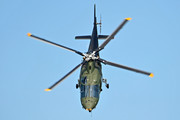 Agusta A109BA - H29 operated by Luchtcomponent (Belgian Air Force)