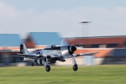 North American P-51D Mustang - N51HY operated by Private operator